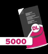 5,000 DL Leaflets