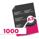1000 A3 Leaflets