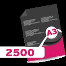 2,500 A3 Leaflets