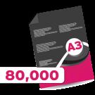80,000 A3 Leaflets