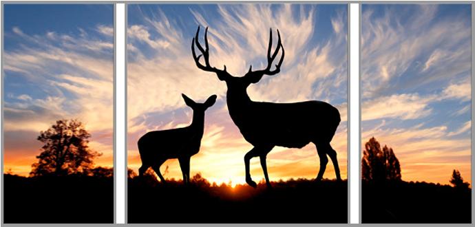 Deers at Dawn: 3 Panel Focal