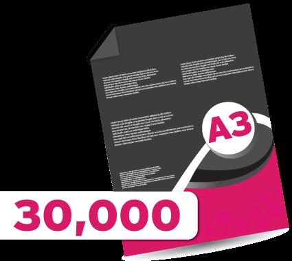 30,000 A3 Leaflets