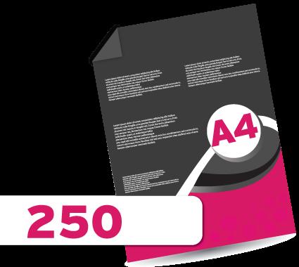 250 A4 Leaflets