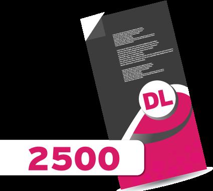 2,000 DL Leaflets