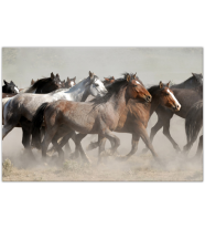 March of Horses: Landscape