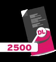 2,500 DL Leaflets